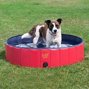 FrontPet Foldable Large Dog Pet Pool