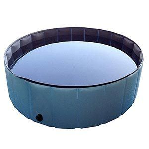 Pyrus Collapsible Pet Bath Pool